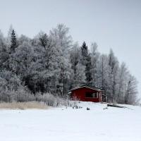 dom w lesie - Finlandia